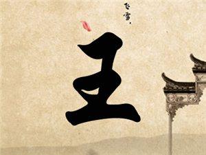 """1001""""王""""姓"""
