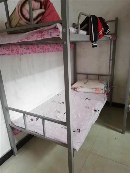 本人有学生架子床出售,九成新。共十套。有意者电联。