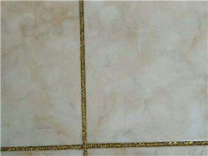 專業瓷磚美縫,專業開荒清潔,家庭清潔!