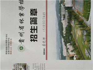 貴州省林業學校招生開始
