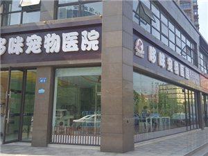 滨州哆咪宠物医院