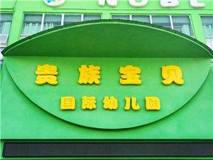 【贵族宝贝国际幼儿园】强势入驻南丰在线