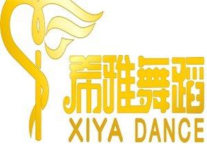 希雅舞蹈连锁培训机构宝丰校区